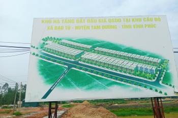 Bán đất mặt đường QL2C kinh doanh sầm uất khu Cầu Đỏ, Đạo Tú, Tam Dương. Đầu tư cực đẹp