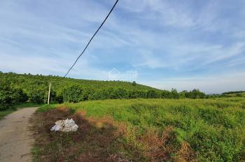 Bán trang trại nghỉ dưỡng diện tích 130.000m2 tại Lương Sơn, Hòa Bình
