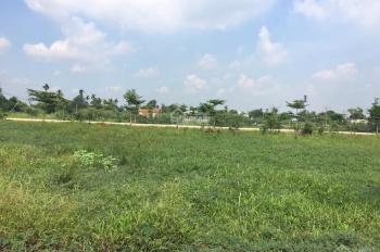 Chính chủ bán 1000m2 đất Bàu Bàng, giá bán 650 triệu.