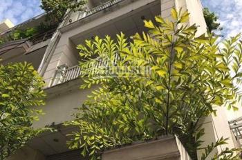 Bán gấp nhà góc 2 mặt tiền hẻm 10m Nguyễn Thái Bình. DT: 4.7 x 20m, 2 lầu sân thượng, view đẹp