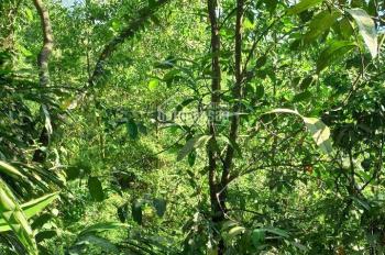 Bán gấp 2150m2 đất Nhuận Trạch - Lương Sơn - HB, đất đẹp, giá rẻ