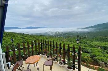 (Độc quyền) Bán đất Bảo Lộc view đồi cực đẹp chỉ 600tr - 500m2 có sổ hồng riêng LH: 0903340286