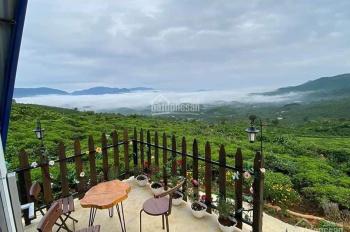Đất biệt thự Bảo Lộc, view đồi săn mây tuyệt đẹp, LH: 0908195662