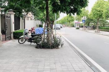 Cho thuê biệt thự Dương Nội - Nam Cường