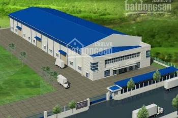 Cho thuê kho xưởng 5.000m2 đường D2, KCN Tân Phú Trung, Xã Tân Phú Trung, Củ Chi