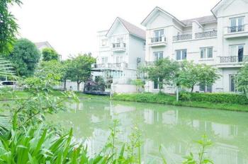 Chính chủ cần bán biệt thự SL Hoa Sữa, hướng ĐN dự án Vinhomes Riverside, DT 270m2, LH: 0903257966