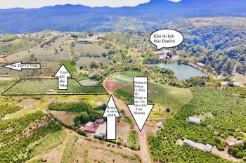 2,3ha (23.000 m2) đất mặt tiền đường lớn - sát khu du lịch thác Đambri - Bảo Lộc - Lâm Đồng