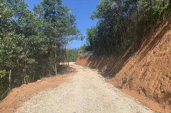Bán 780ha đất rừng sản xuất, đầy đủ pháp lý tại Hòa Bình