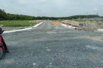 Cần bán lô đất giá 550tr, lock LK 01 tại Phúc Hưng Golden, sau KCN Minh Hưng III, SHR 0909725586