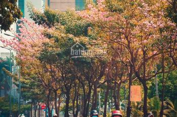Bán nhà mặt tiền đường Nguyễn Tri Phương (7.3x16m), trệt 3 lầu, HĐT: 100tr, giá 32 tỷ thương lượng