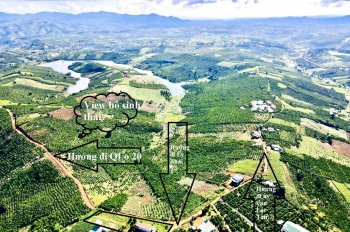 2000m2 đất nghỉ dưỡng view hồ sinh thái - Đambri - Bảo Lộc - Lâm Đồng