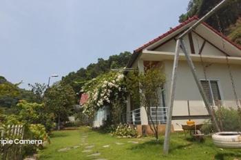 Khuôn viên đẹp như tranh 1,6ha view xinh ở Lương Sơn giá chỉ vài tỷ