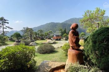 Cần bán: nhà, đất, khách sạn, biệt thự thích hợp nghỉ dưỡng và đầu tư tại thành phố Đà Lạt