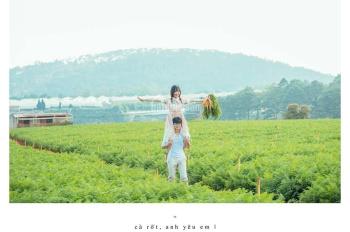 Bán đất nông nghiệp Phú Hội, Đức Trọng