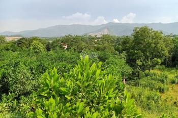 Nhanh tay để hữu lô đất 2150m2 vị trí đắc địa views thoáng mát tại Nhuận Trạch, Lương Sơn, HB