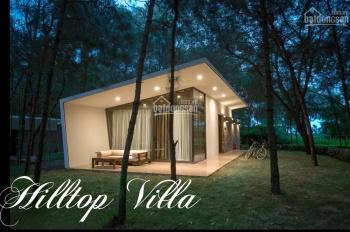 Suất ngoại giao 2 căn biệt thự Hilltop Villa cuối cùng sổ đỏ 140m2, chìa khóa trao tay, TT 2,8 tỷ