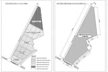 Cho thuê ngay 10.000m2 diện tích đất làm sân bóng tại đường Cát Linh, Long Biên, Hà Nội