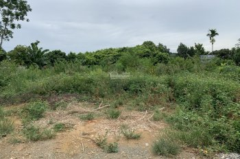Bán đất thổ cư ở thôn Yên Thái, xã Đông Yên, huyện Quốc Oai, Hà Nội