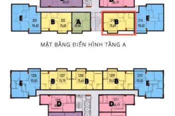 Chính chủ cần bán nhanh chung cư CT4 VCN Phước Hải giá chênh tốt - liên hệ 0379862100