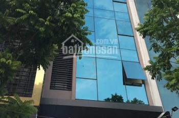Cho thuê nhà nguyên căn phố Nguyễn Quốc Trị, sau Big C Thăng Long, DT 110m2 * 7 tầng, MT 6,5m
