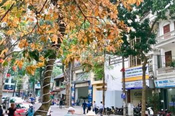 Bán biệt thự đường Âu Cơ, P. Phú Trung, Tân Phú, DT: 15x12m, 3 lầu giá chỉ: 16.5 tỷ
