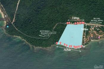 Chính chủ bán 9.84ha đất Cửa Cạn có 365m mặt biển, giá tốt nhất Thị Trường Phú Quốc, Hỗ Trợ làm DA