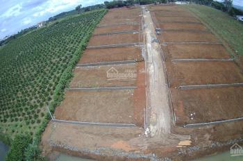 Đất ĐamBri Vị trí Mặt tiền đường Lý Thái Tổ, Giá 3,8/m2, Sổ riêng từng nền, CC sang tên ngay.