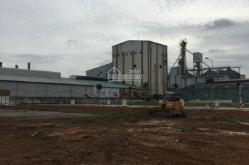 ĐẤT ĐẸP gần sân bay Long Thành, Xã Bình Sơn, Long Thành 100m2/955tr, SHR, TC 100%. LH: 0932985604
