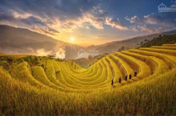 Bán đất nền dự án Apec Golden Valley Mường Lò - Nghĩa Lộ
