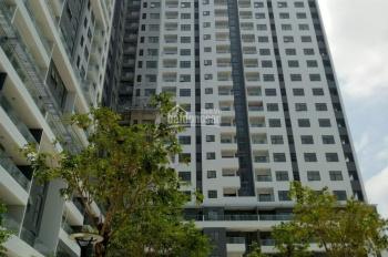 Cần tiền bán gấp căn hộ Monarchy 3 PN, diện tích 100m2 tầng trung giá rẻ