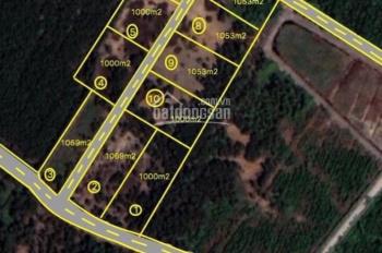 Nhà vườn Vĩnh Thanh xe hơi tới gần sát khu dân cư, thuận tiện di chuyển về Q2, Q9, LH 0865992269