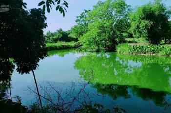Cần bán 3600m2 đất thổ cư view cánh đồng tại Lương Sơn, Hòa Bình