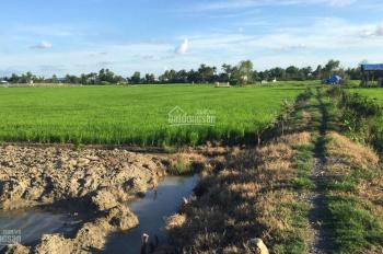 Hủ cần bán đất thổ và lúa dt 280m2 đất thổ và 737m2 đất lúa tdt 1017m2