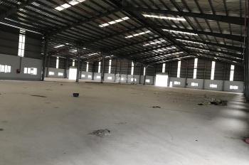 Cần cho thuê kho xưởng 4500/8000 m2 xây dựng theo tiêu chuẩn, mới, đường xe cont 40F