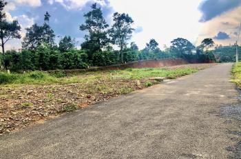 Bán đất mặt tiền Triệu Quang Phục, trung tâm TP Bảo Lộc. 0379.893.779