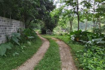 Bán khuôn viên đất Lương Sơn, Hòa Bình diện tích rộng 150.000 m2