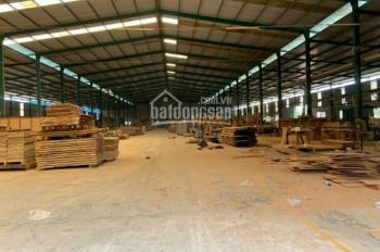 Chính chủ cho thuê kho, nhà xưởng diện tích 58000m2 tại xã Tân An, Vĩnh Cửu, Đồng Nai
