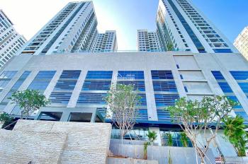 Cho thuê căn hộ Central Premium Quận 8 - ngay cầu Nguyễn Tri Phương, full NT 8 triệu bao phí, 1PN