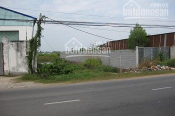 Bán gấp đất đường Lê Thị Siêng, xã Tân Thông Hội, Củ Chi, 109m2/750tr, sổ hồng sẵn, LH 0377711532
