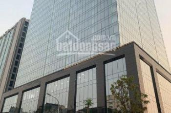 BQL Toà nhà Peakview Tower 36 Hoàng Cầu cho thuê văn phòng. DT 100 -1000m2. Giá ưu đãi.