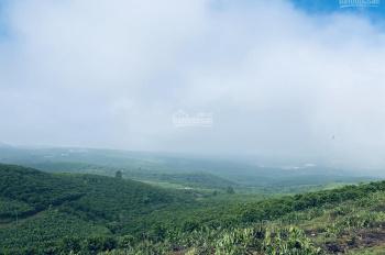 (View Đồi - Cực Đẹp) - Trung Tâm Bảo Lộc - 879m2/662tr - 1625m2/982tr - LH 0917137162