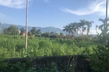 2700m2 mặt đường liên xã giữa nhuận Trạch và cư yên,phù hợp làm nhà vườn hoặc đầu tư sinh lời