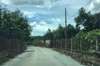 Đất giá rẻ ngay xã An Bình Phú Giáo gần khu công nghiệp Nam Đồng Phú