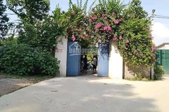 8600m2 800m2 TC thực tế sử dụng gần 1ha sẵn nhà cửa vườn cây ao cá tại xã Long Sơn, Lương Sơn, HB