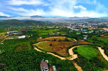 Bán hòn đảo hình túi tiền Lộc Châu, TP. Bảo Lộc suối chảy bao quanh đất Cực đẹp