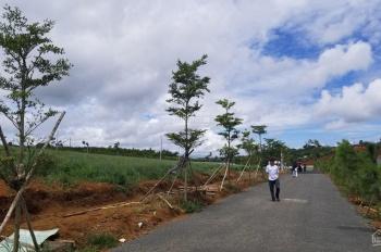 Cần bán đất nền Bảo Lộc giá rẻ