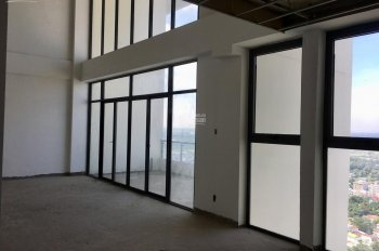 Căn hộ Penthouse giá tốt nhất Quận 2, chỉ 33 triệu / m2