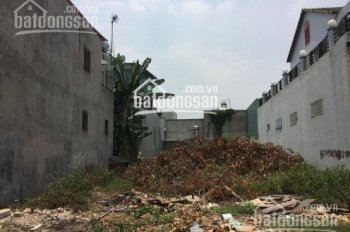Bán đất Lê Thị Hà, Tân Xuân, Hóc Môn, 84m2, sổ hồng riêng, thổ cư 800 triệu