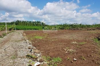 Đất xã Xuân Tây cần bán gấp, 6 sào 2, có 300m2 thổ cư và 100m mặt tiền, thích hợp phân lô sào