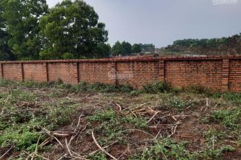CC cần bán đất tái định cư Phú Cát, Hòa Lạc, Quốc Oai, TP Hà Nội, cam kết xem đất xem sổ ngay luôn